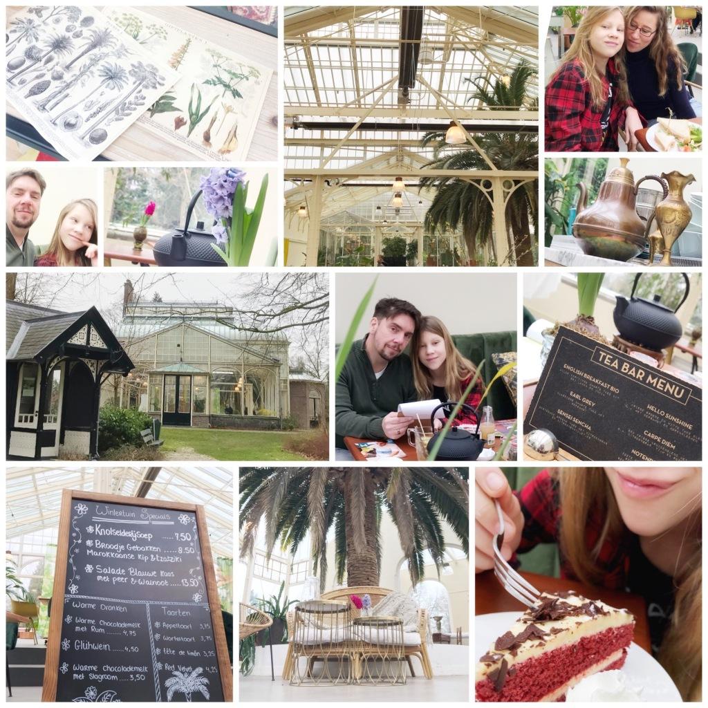 Collage van het bezoek aan de Wintertuin in Baarn