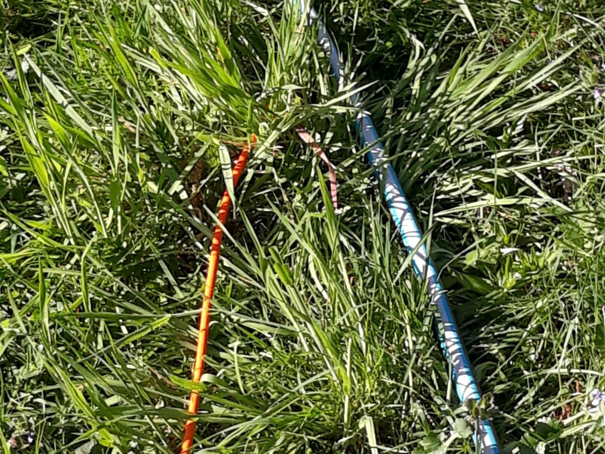 snoeren over het gras