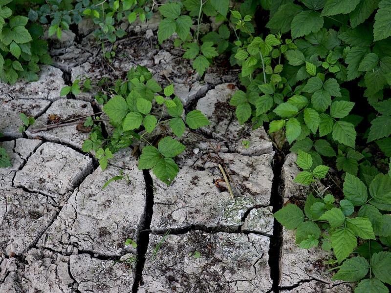 droogte en waterverspilling voorkomen