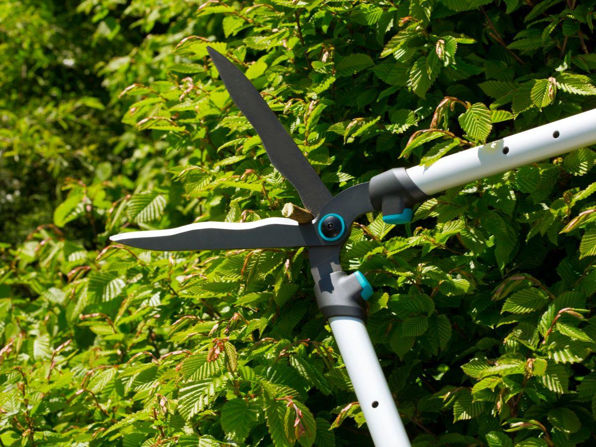 Gardena heggenschaar snoeischaar