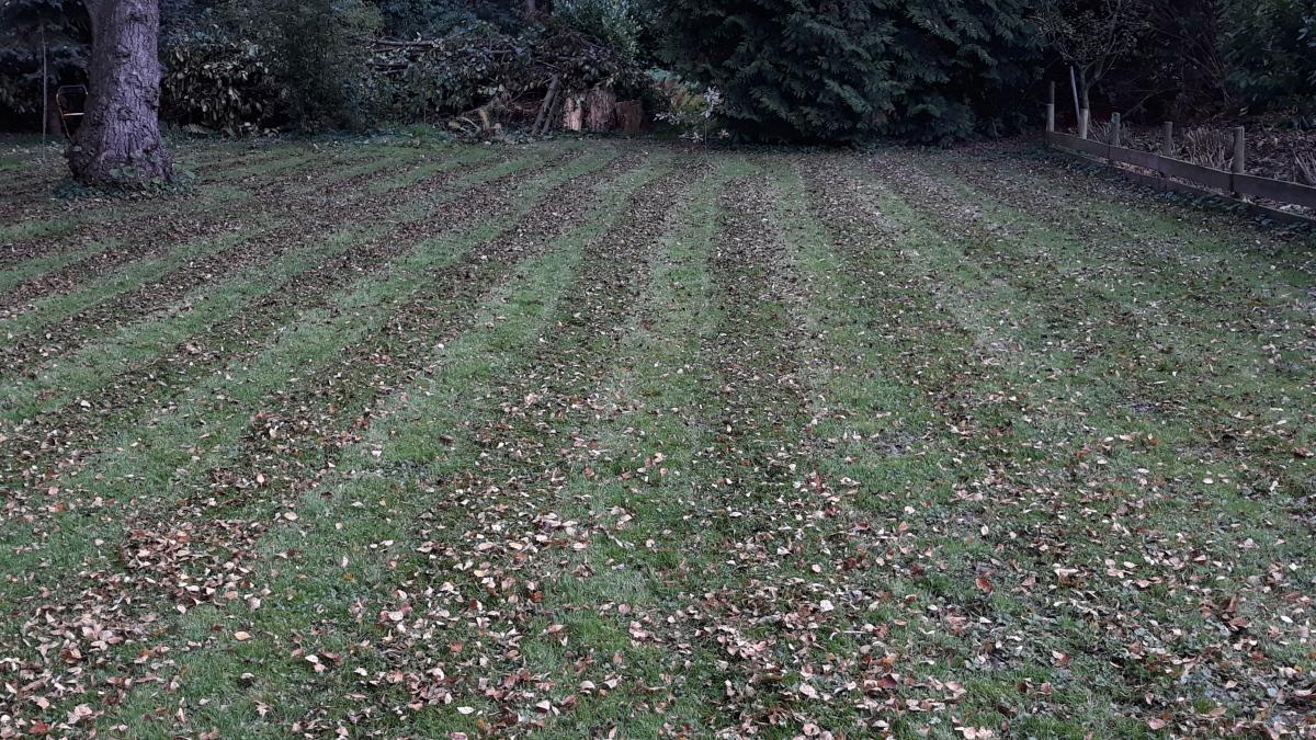 Eén van de laatste keren grasmaaien ditseizoen