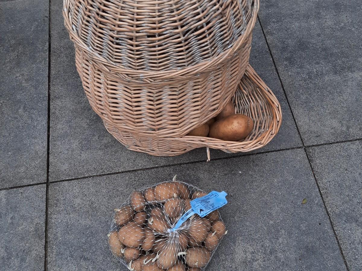 aardappelen poten en bewaren