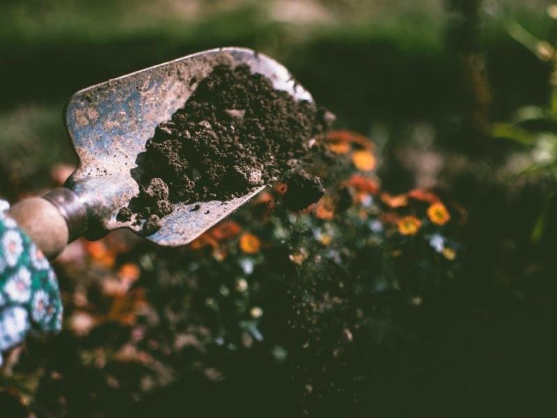4 manieren om je tuin in te richten